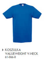 Koszulka Valueweight V neck